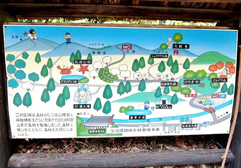 七越峰森林公園 本宮大社 桜 花見 和歌山