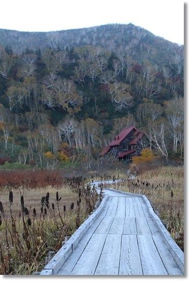栂池自然園-66 見えてきた出口 15.10.2