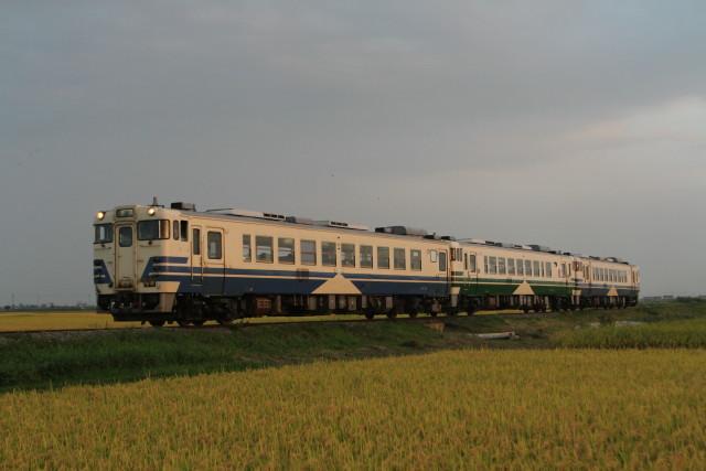 JR五能線 黄金色の稲穂に 旧型 キハ402
