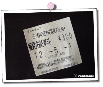 滝桜.jpg