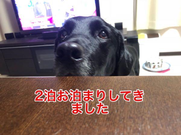 rblog-20180121094131-01.jpg