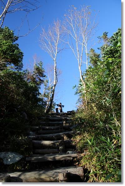 栂池自然園-47 階段を上って 15.10.2