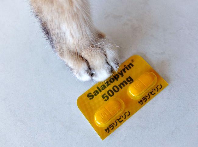猫 下痢 サラゾピリン錠 薬 コンベニア ステロイド