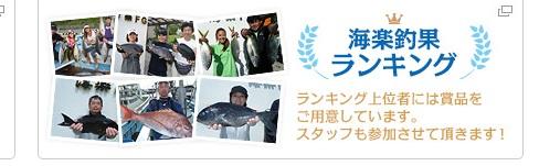 海楽釣果ランキングへ