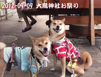 20120909大鳥神社祭り