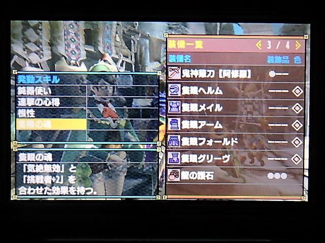 PC113179.JPG