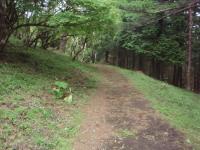 20120624_83.jpg