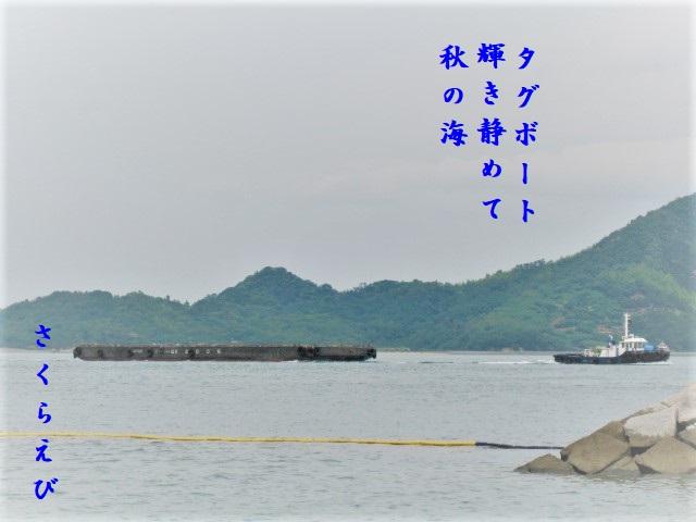 IMG_5205aki3blog46.jpg