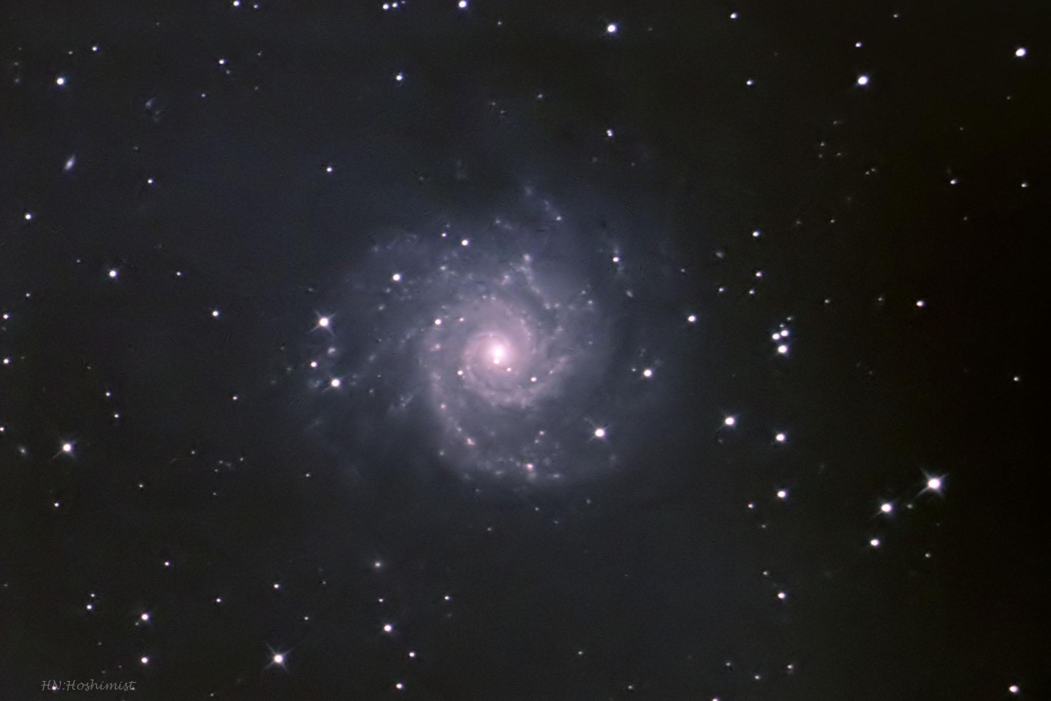 M74 うお座の渦巻銀河 (178MM5対...