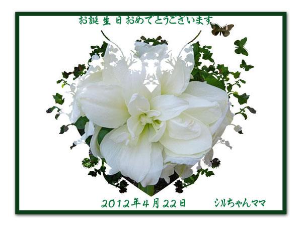 20120422誕生日カードシルちゃんママさん