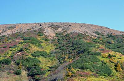 白根山の紅葉