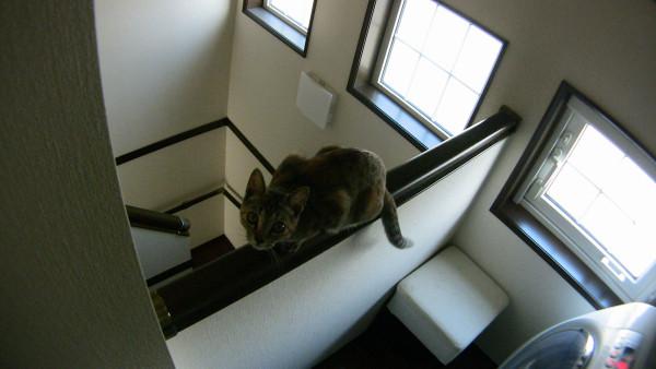 2階の階段横にある洗濯機前