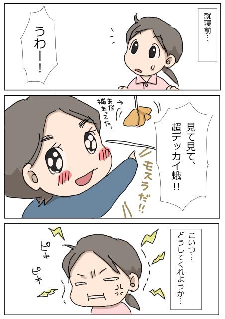 ヤママユガ2