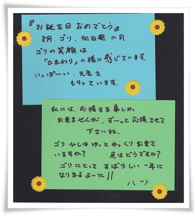 10.まゆみさん.jpg