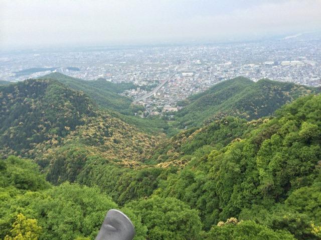 春の金華山.JPG