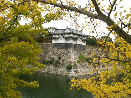5大阪城 5006jpg.jpg