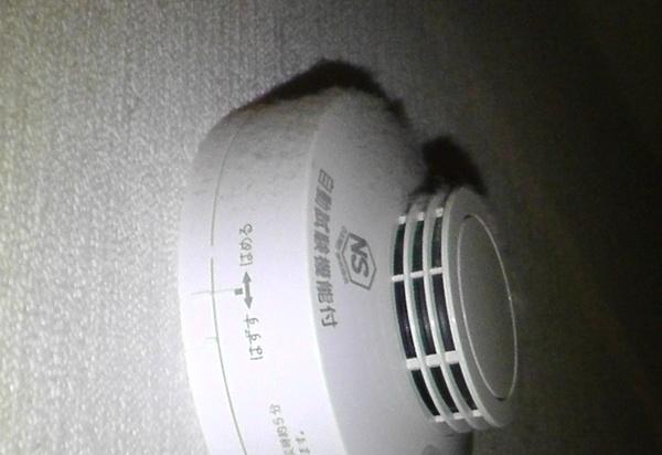 壁付けの火災警報器の上にホコリが積もる