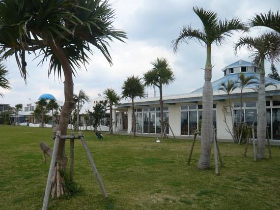3青い海建物550.jpg