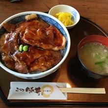 豚丼220.jpg