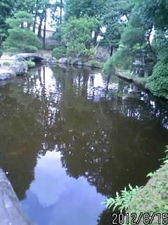 鑁阿寺の池