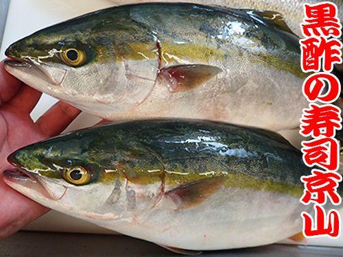 江戸川区西一之江に美味しいお寿司を宅配します!