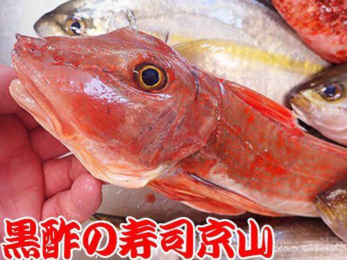 寿司 出前 中央区 日本橋富沢町