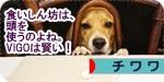 kashikoi banner.JPG