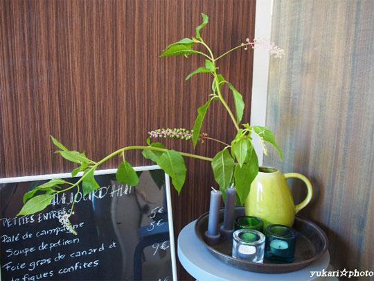 flower2016062604.jpg