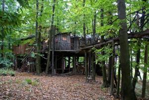 tree_houses_1-2.jpg