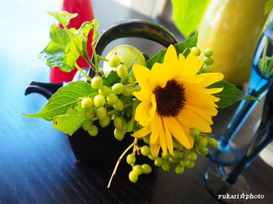 flower2016062602.jpg
