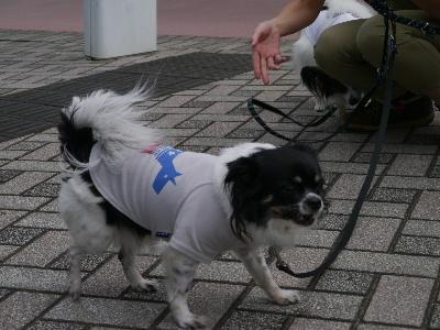 2012八景島オフ会16.JPG