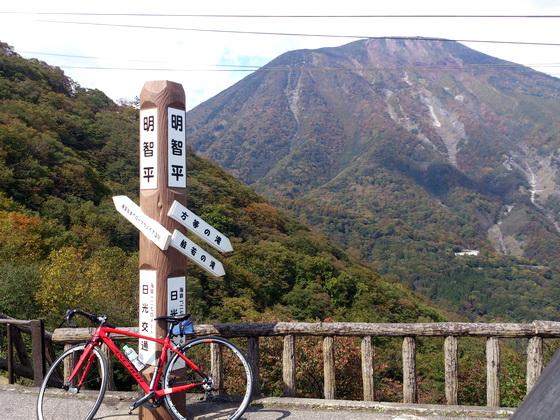 Nikkou_d.jpg