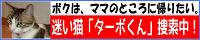 ターホ?くんハ?ナーPNG形式 200×40.png