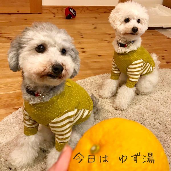 rblog-20181227213919-00.jpg