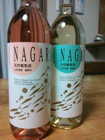 2 bottle.JPG