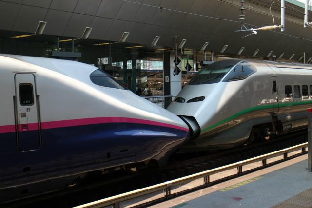 東京駅 連結 新幹線が 花盛り!