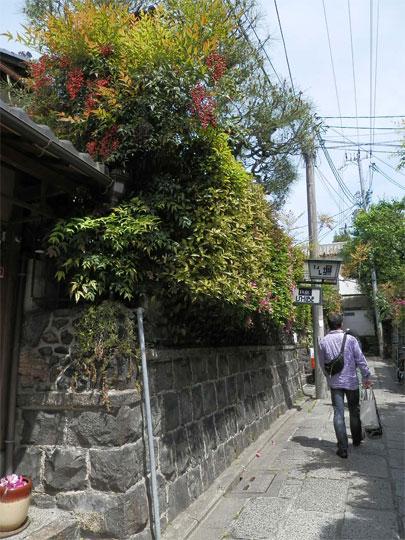 kyoto2014050415.jpg