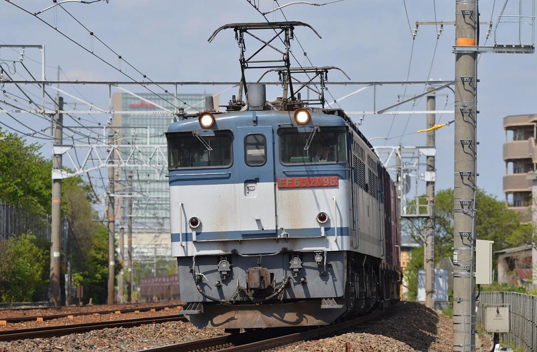 DSC_3515.JPG