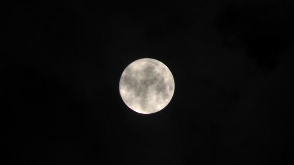 2015年 中秋の名月