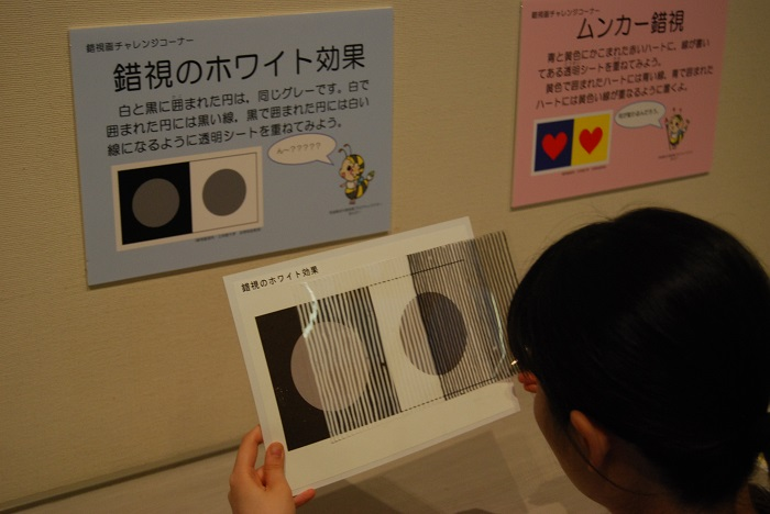 DSC_0011 - コピー.JPG