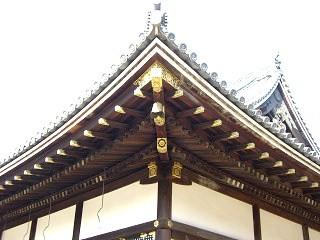 20160628-仁和寺金堂垂木.jpg