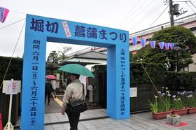 syoubu2014_a.JPG