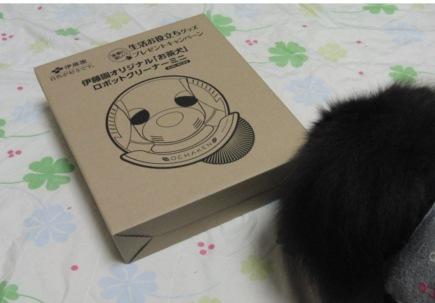 2013.お茶犬2.JPG
