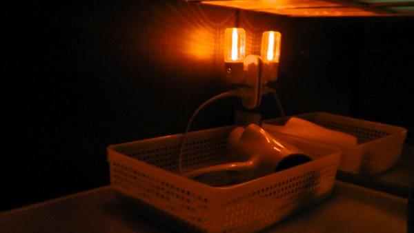 洗面化粧台の上を照らす常夜灯