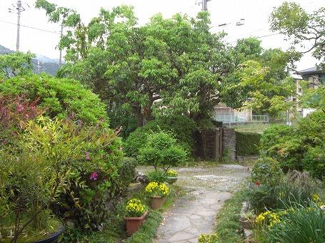 自家焙煎OKADAの庭全景