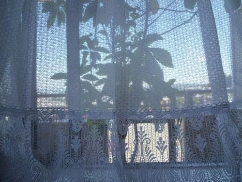 5カーテン洗い 出窓3500.jpg
