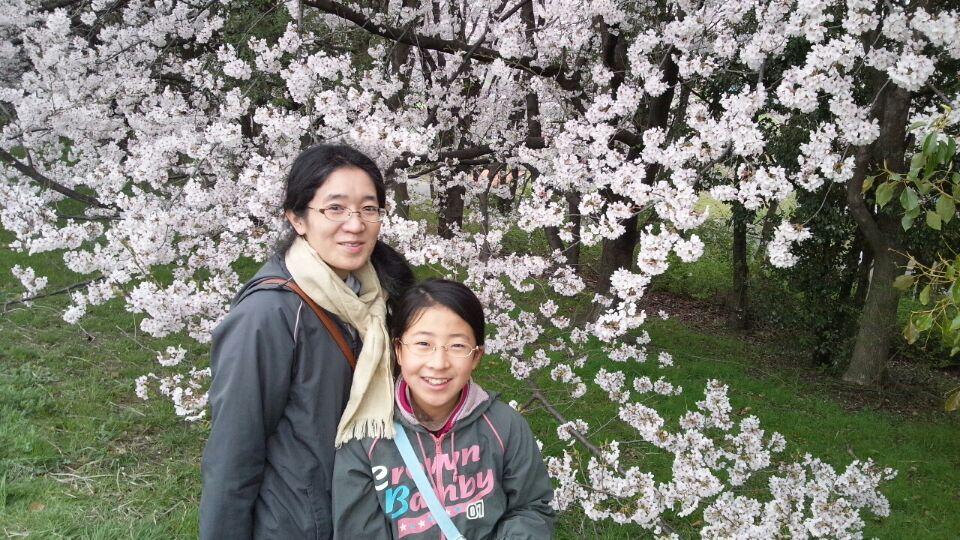 0331 大泉緑地桜3