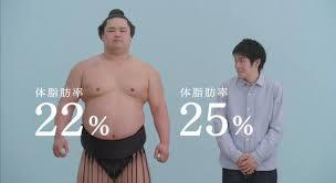 力士 体 脂肪 率
