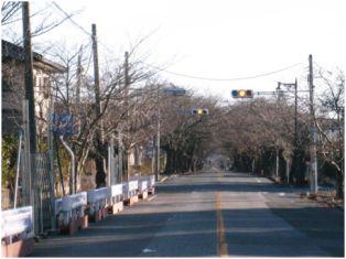 fukusima04.jpg