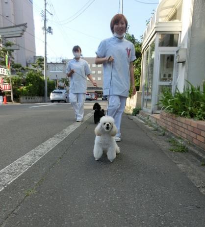 山田さん工藤さんお散歩.jpg
